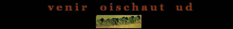 Avenir Boischaut sud